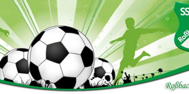 sss-wald-sportverein-banner-bilder-oberpfalz